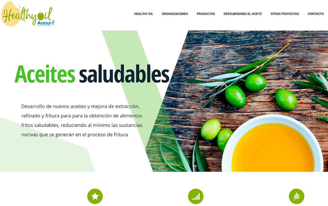 Diseno-web-healthy-oil